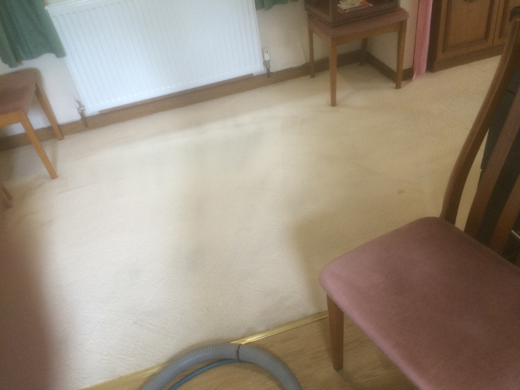 Carpet Cleaning Examples